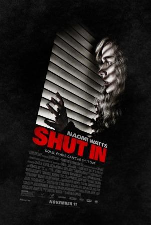 shut_in_ver2